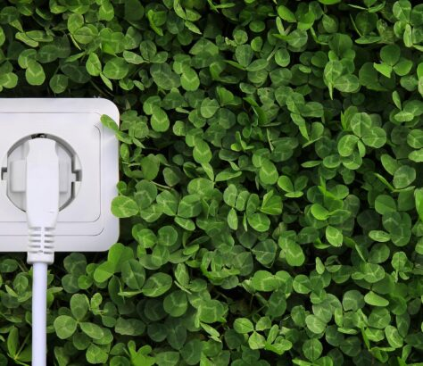 Plug surrounded by greenery