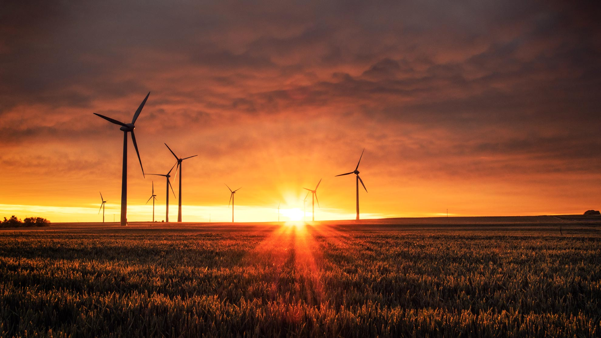 EU sees renewables overtake fossil fuels for first time