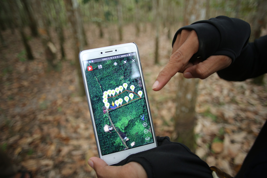 Digitization of the entire supply chain enables full traceability of natural rubber.