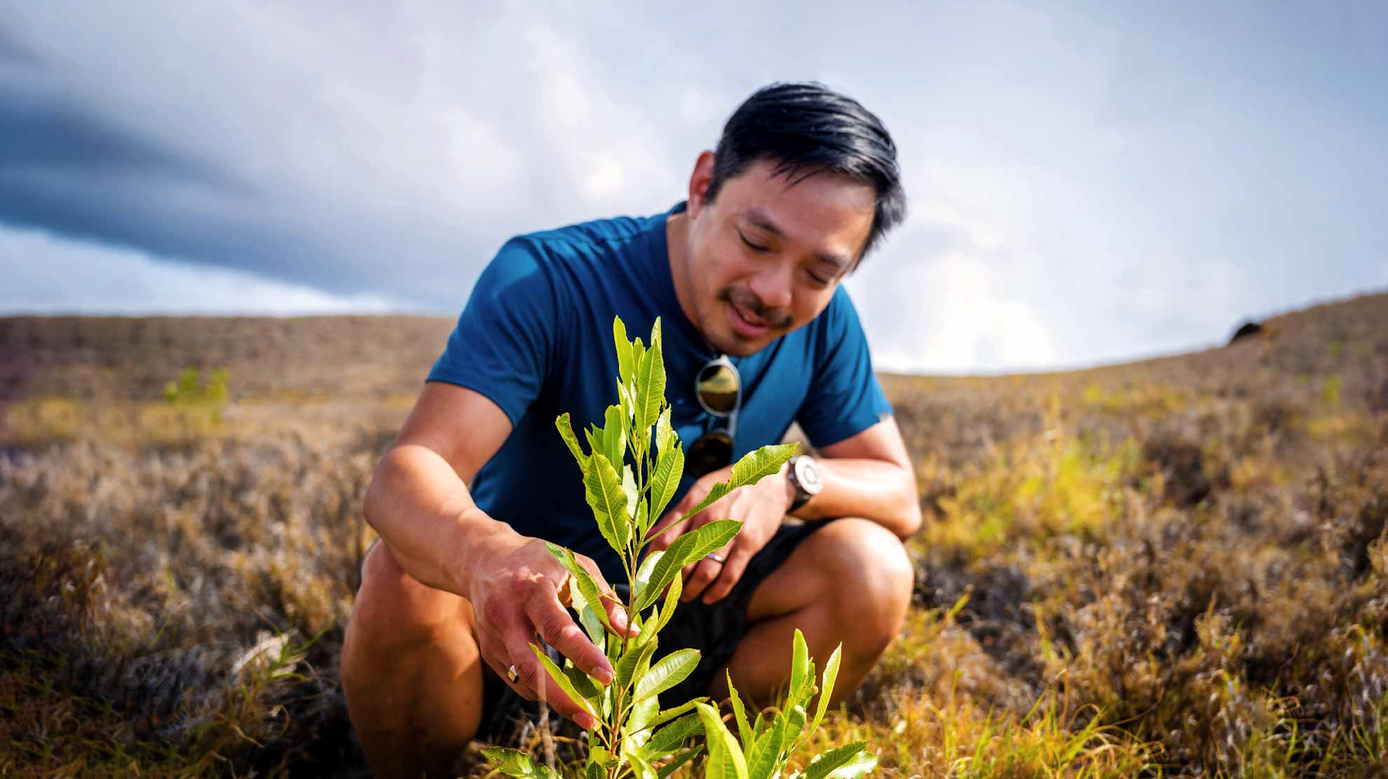 From tech to trees: The ex-CEO turning his Silicon Valley skills to mass reforestation