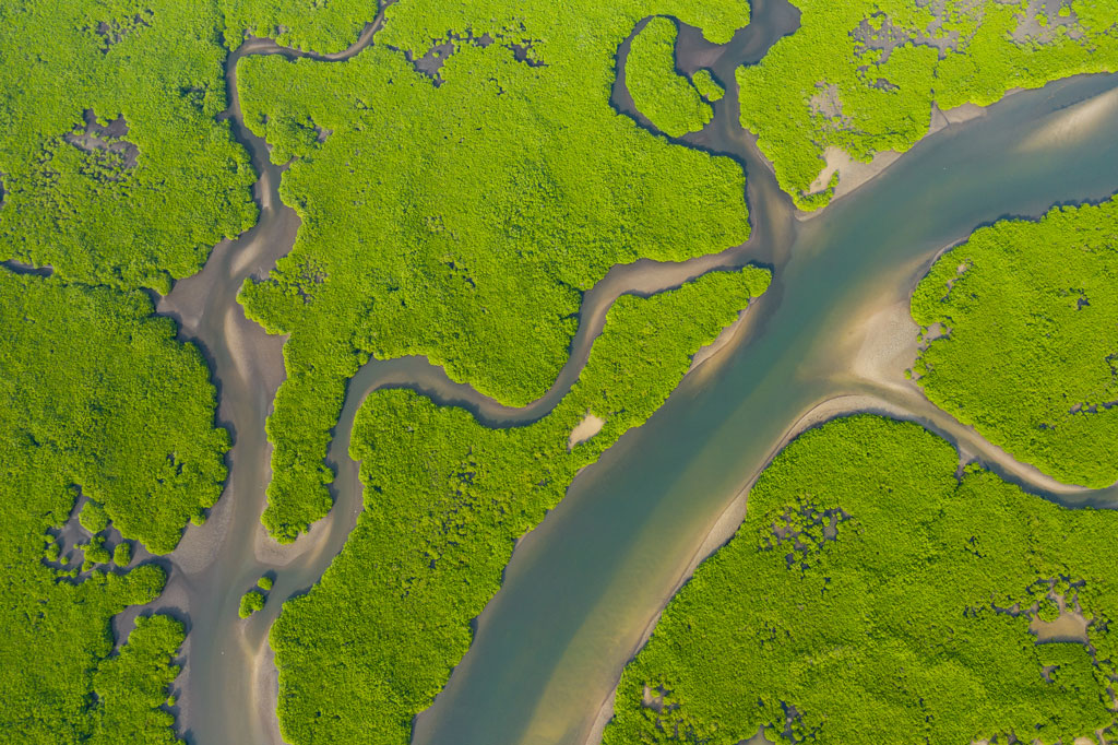 Aerial view of Mangrove forest in the Sine Saloum Delta, Joal Fadiout, Senegal