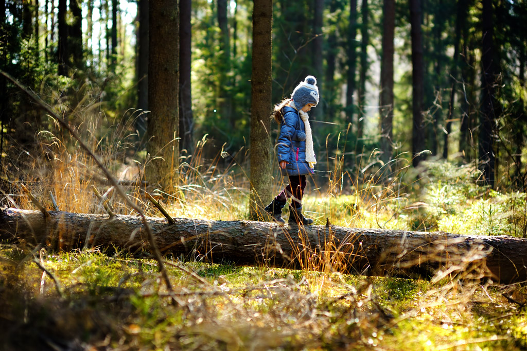 The study revealed that children and young people living nearer to woodlands had better cognitive development and were less likely to experience emotional or behavioural issues