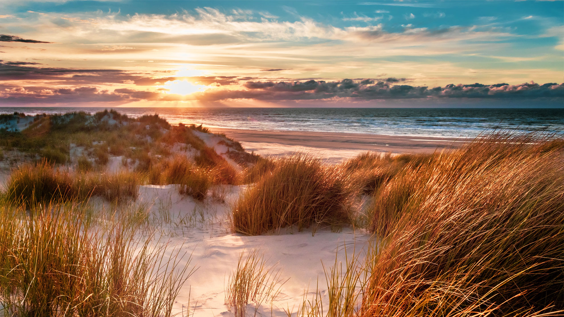 Dynamic Dunescapes aims to foster our dunes