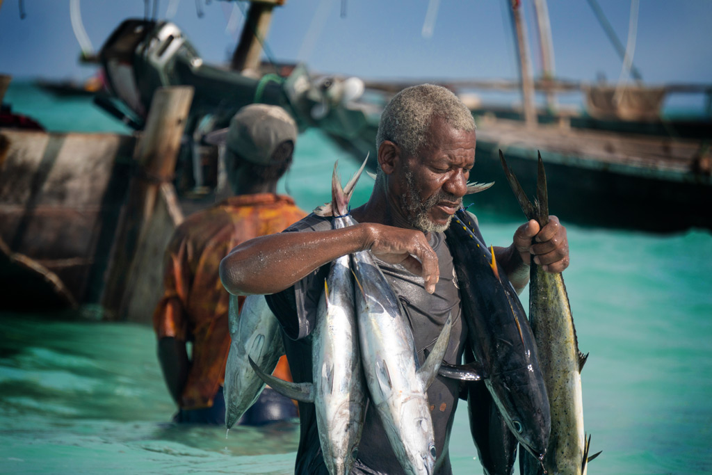 The role of oceans and its wildlife has played a vital role in human history. Locals in Tnazania, Africa bringing in the daily catch. Photo credit: Gideon Ikigai
